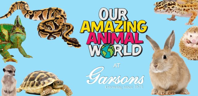OUR AMAZING ANIMAL WORLD IMAGE WITH GARSONS.jpg