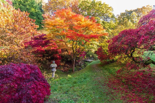 ramster gardens.jpg