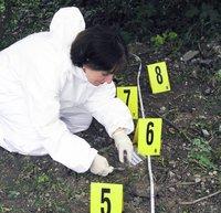 Sampling soil at a crime scene.jpg