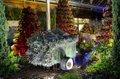 RHS Garden Wisley Events December 2019 - Enchanted Botanical Christmas cr RHS-Paul Debois.jpg