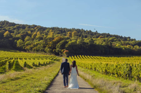 denbies-wine-estate-wedding-venue.png