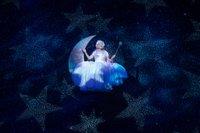NWT Cinderella.Credit Craig Sugden (13).jpg