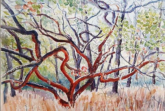 Painting-Trees.jpg