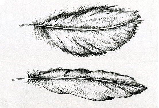 Pen-Ink.jpg