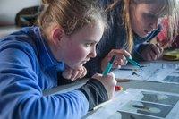 Child colouring Bewick's swan.jpg