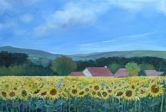 Songul_Sunflower Field.jpg
