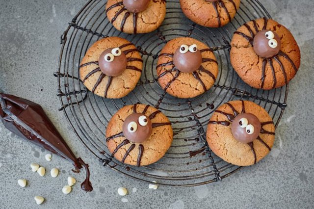 spider biscuits.jpg