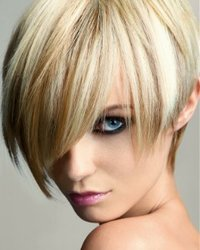 organic hairdresser.jpeg