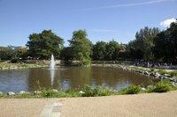 bishop's park.jpg