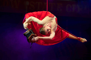 moscow state circus2.png