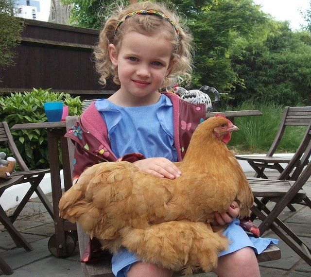 cp chicken girl small.jpg