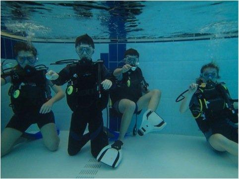 exorta diving.jpg