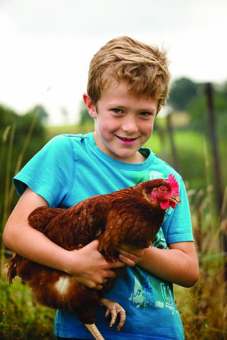 Boy_chicken small.jpg