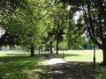 lammas park.jpg