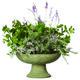 garden bowl.jpg