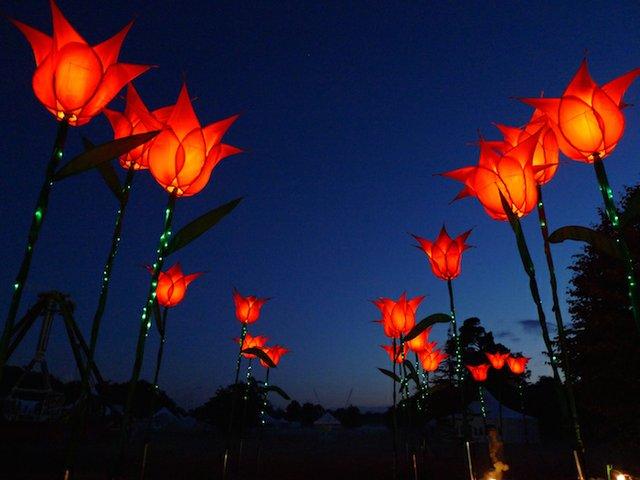 RHS Garden Wisley December - Lights switch on and Late Night Shopping cr Jigantics.jpg
