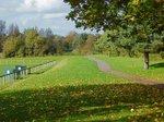 shalford park.jpg