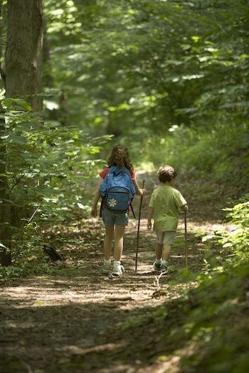 Children_hiking_in_the_forest.jpg