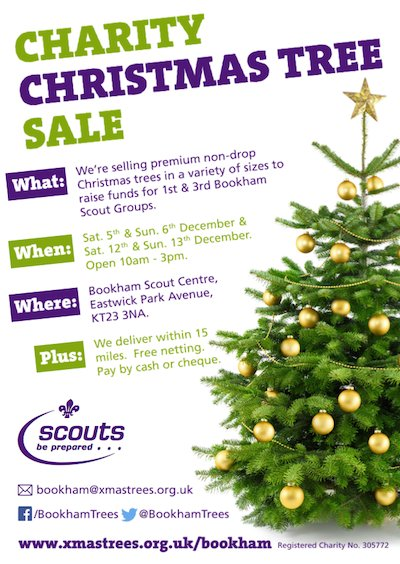bookham scouts charity christmas tree sale.png