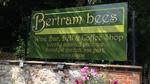 betram bees.png
