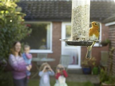 birdwatch main ben hall.jpeg