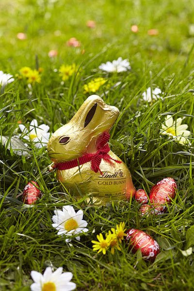 RHS March Lindt Bunny Hunt c RHS.JPG