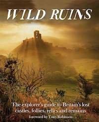 Wild Ruins small.jpg