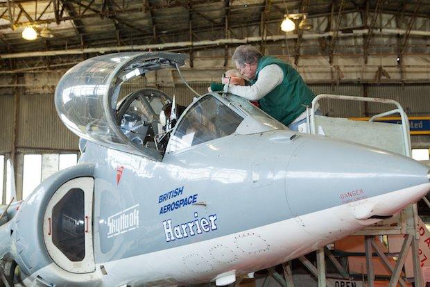 Harrier webcopy.jpeg