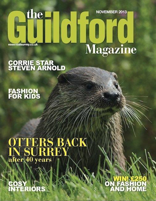 The Guildford Magazine - November