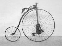 Kangaroo_Bicycle_Rev.jpg
