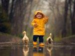 2 Ducks .jpeg