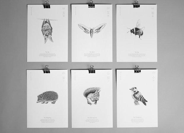 A4 Prints x6 copyweb.jpeg