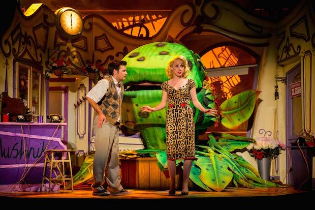 Sam Lupton (Seymour), Stephanie Clift (Audrey) and Audrey II in Little Shop of Horrors. Photo Credit Matt Martin.jpg