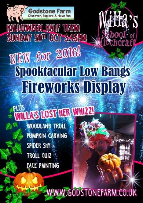 Fireworks Poster 2016.jpg