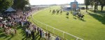 windsor racecourse.jpg