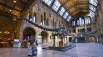 Natural-History-Museum-Inside.jpg