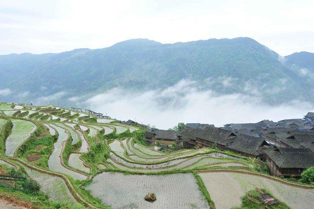 Jiabang-Terraces---Sisters-Rice-Terraces.jpg