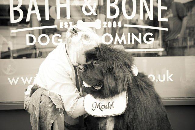 Dog & Boen.jpg