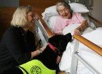 Royal tryinity hospice.jpg