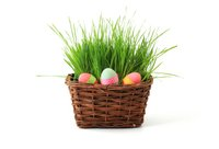 basket-celebration-decoration-easter-41346.jpeg
