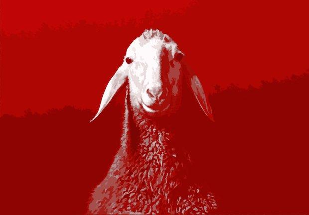 Spring Offensive Sheep_v2 high res  copy.jpg